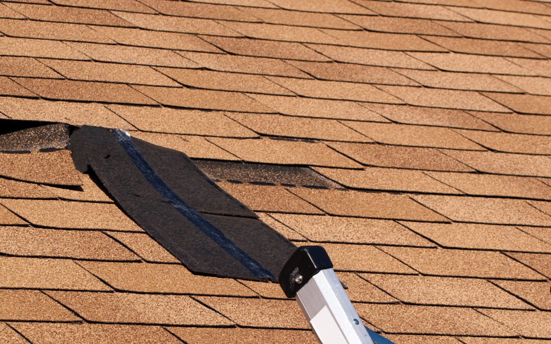 5 Types of Roof Repairs You Need to Know About