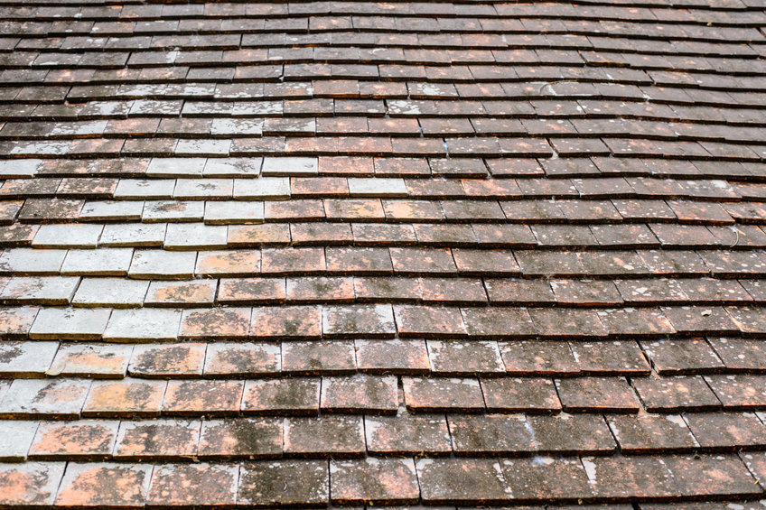 What a Roof Can Tell You About a New House
